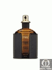 GianFranco Ferre Ferre FOR HIM EDT 75ml